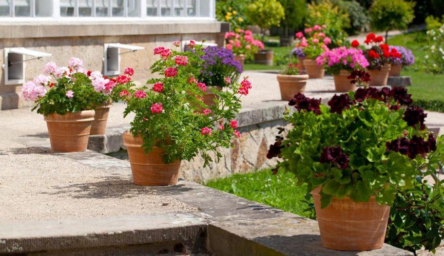 Landscape Gardeners Perth